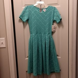 Brand New Aqua Patterned Lularoe Amelia Dress
